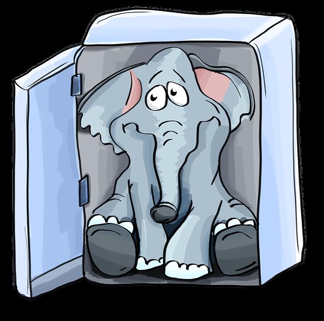 slon v lednici