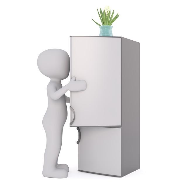 váza na lednici